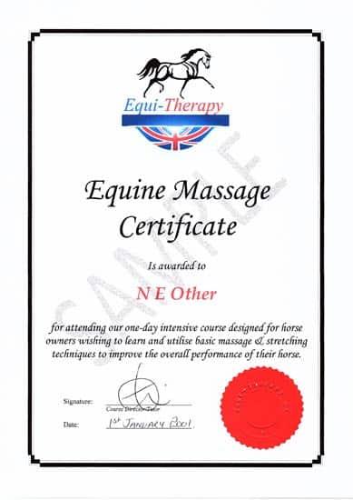 Equine Massage Certificate